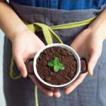 Indoor Composting – Part 2